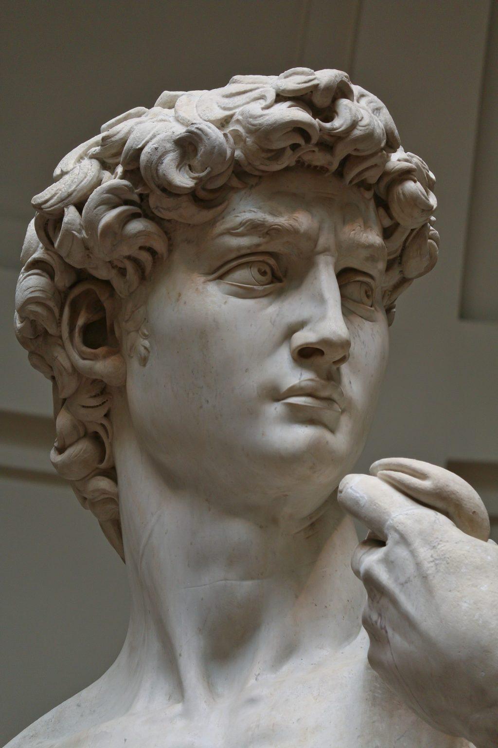 ミケランジェロのダビデ像、目