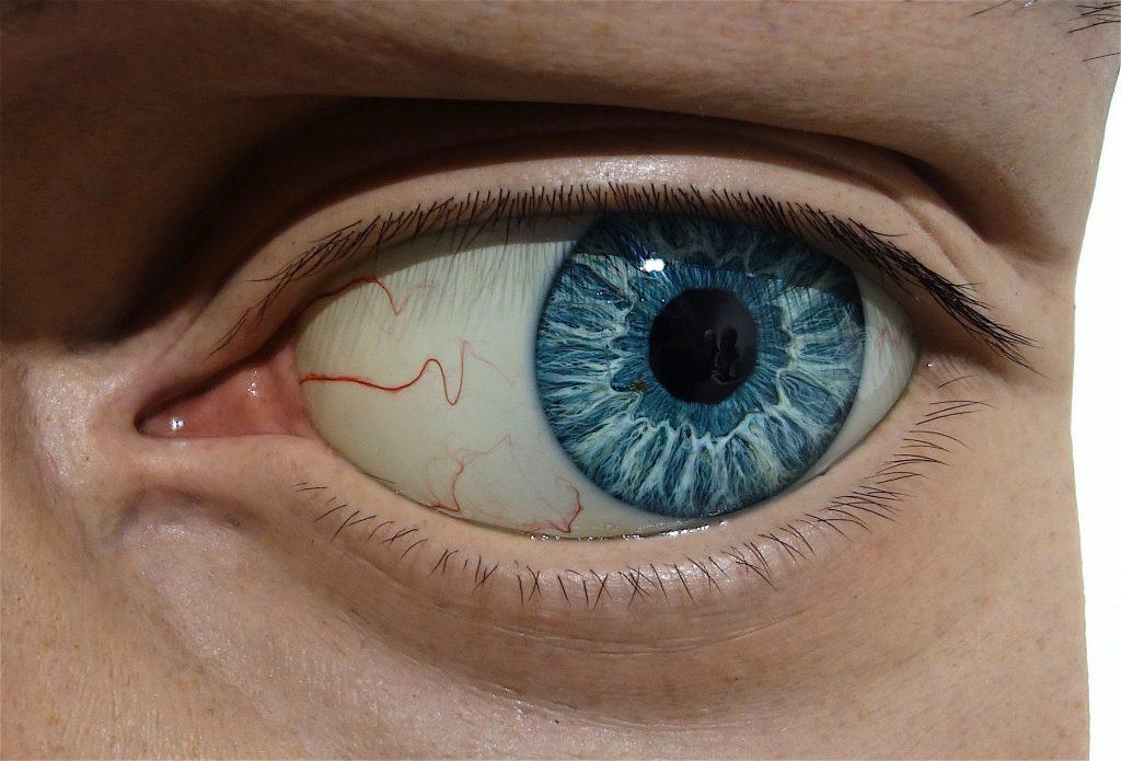 KAMIJI Ichitaka 上路市剛 「David-(Blue Eye)」2018 部分