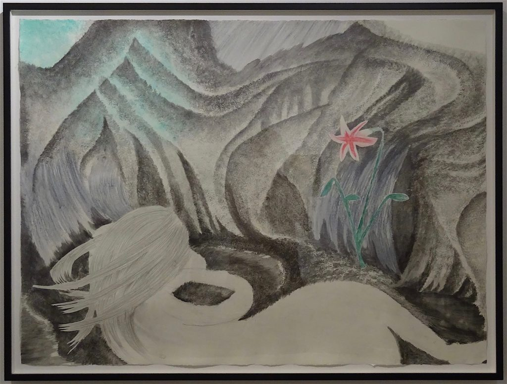"村瀬恭子 MURASE Kyoko ""Cave"" 2010, 106.5 x 79 cm, Graphite, color pencil on paper, set of 5, detail"
