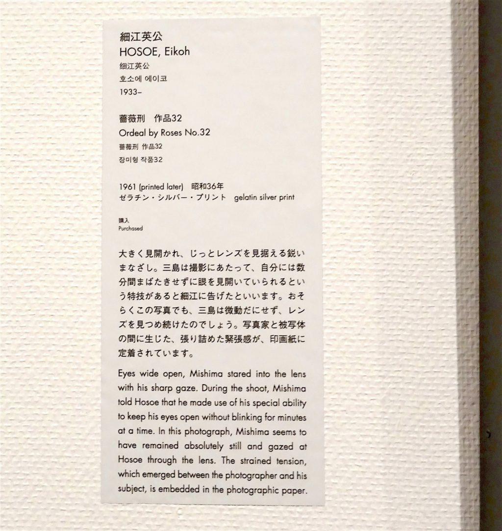 東京国立近代美術館 細江英公・三島由紀夫、展示風景8