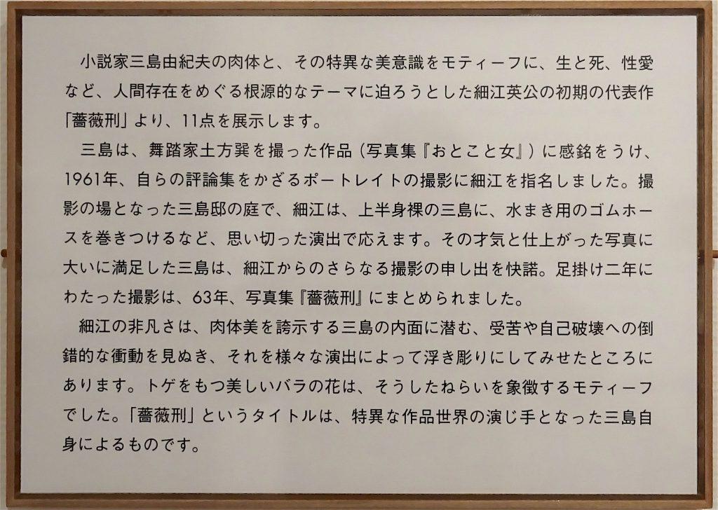 東京国立近代美術館 細江英公・三島由紀夫