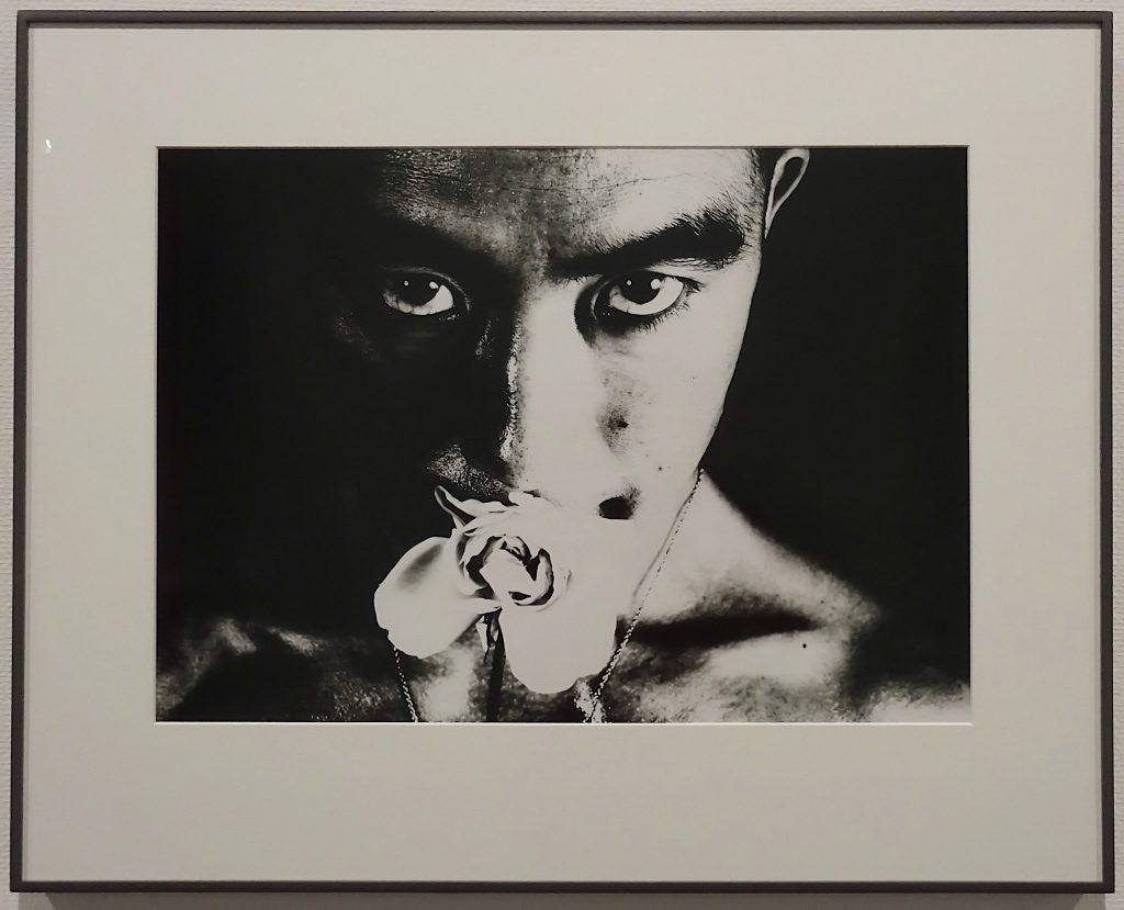 東京国立近代美術館 細江英公・三島由紀夫、展示風景7