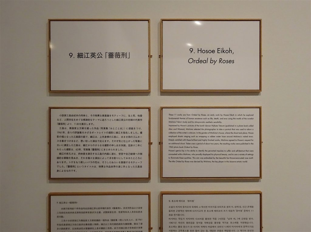 Explanation boards about Eikoh Hosoe's homoerotic photographs of MISHIMA Yukio