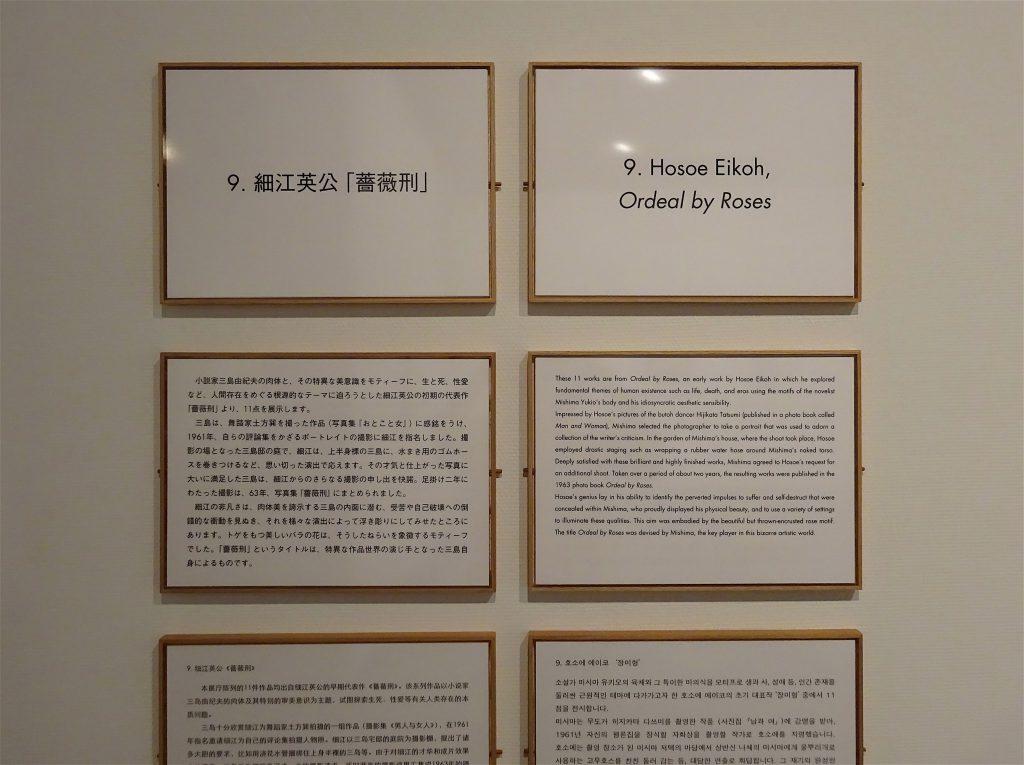 Explanation boards about Eikoh Hosoe's homoerotic photographs of MISHIMA Yukio