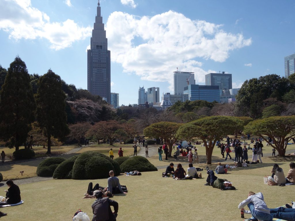 Shinjuku Gyoen National Garden 新宿御苑 桜の季節