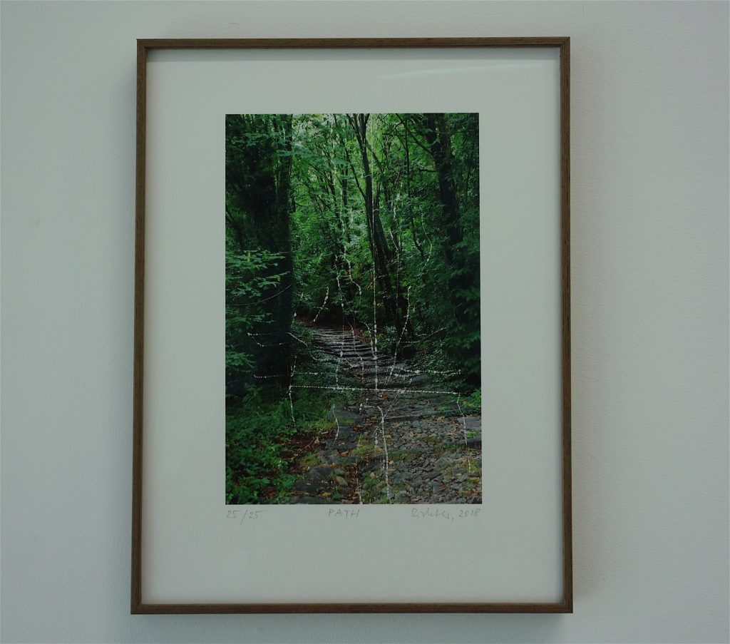 Gerhard Richter 'PATH' 2018, unique edition series, inkjet print (Photo taken by Richter at Lago Maggiore, Italia)