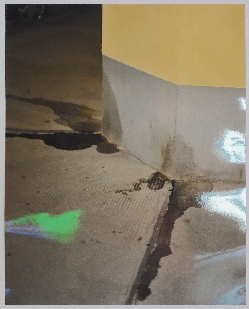 """丹羽良徳 NIWA Yoshinori """"Manifesting Pee"""" 小便をマニフェストする 2019 Lambda Print, Edition work"""