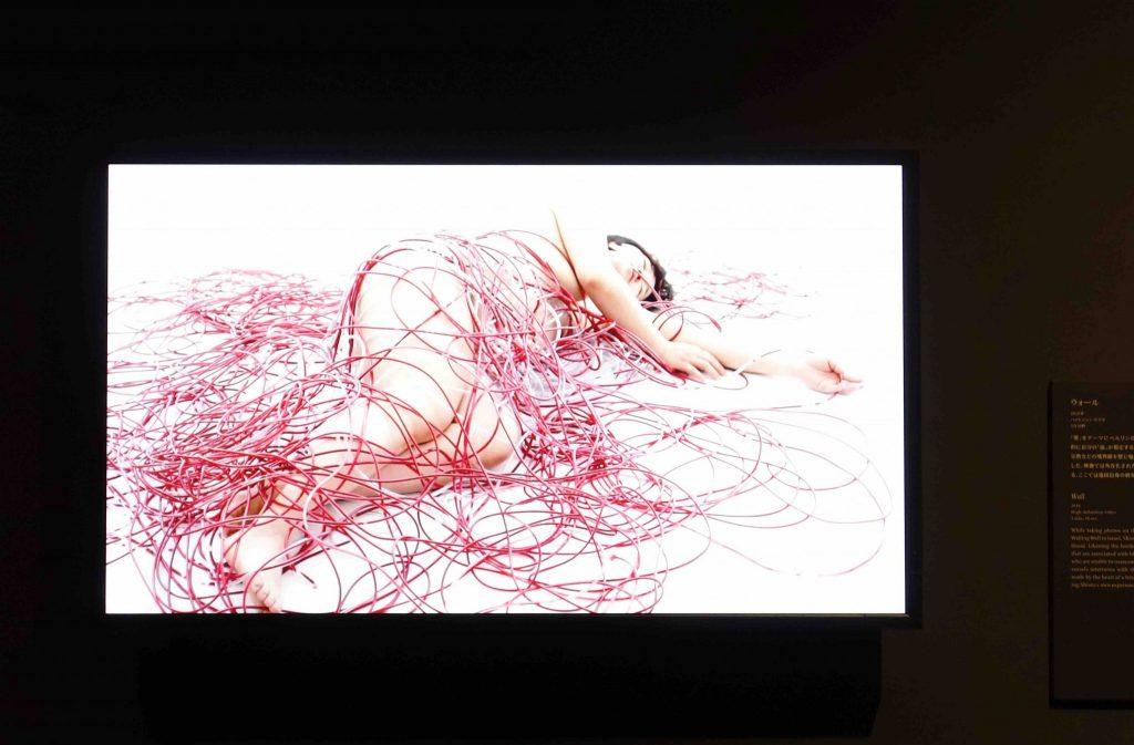 """塩田千春 SHIOTA Chiharu """"Wall"""" 2010."""