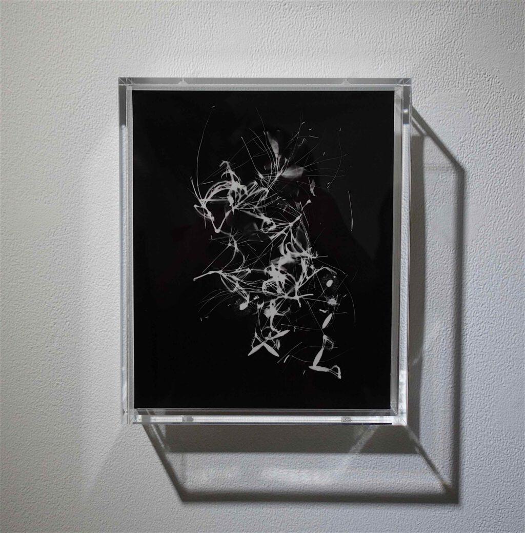 "NAGASHIMA Yurie 長島有里枝 ""Cleome#2"" 2019, Gelatin Silver Print, unique"