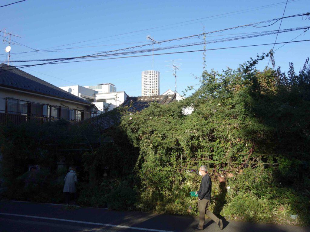 Tokyo 東京33