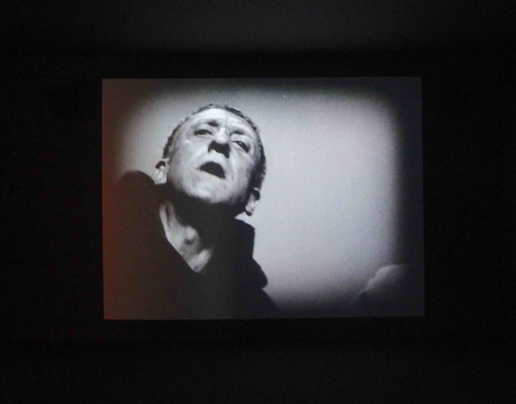 """Javier Téllez """"La Passion de Jeanne d'Arc (Roselle Hospital, Sydney)"""" 2004, installation view3"""